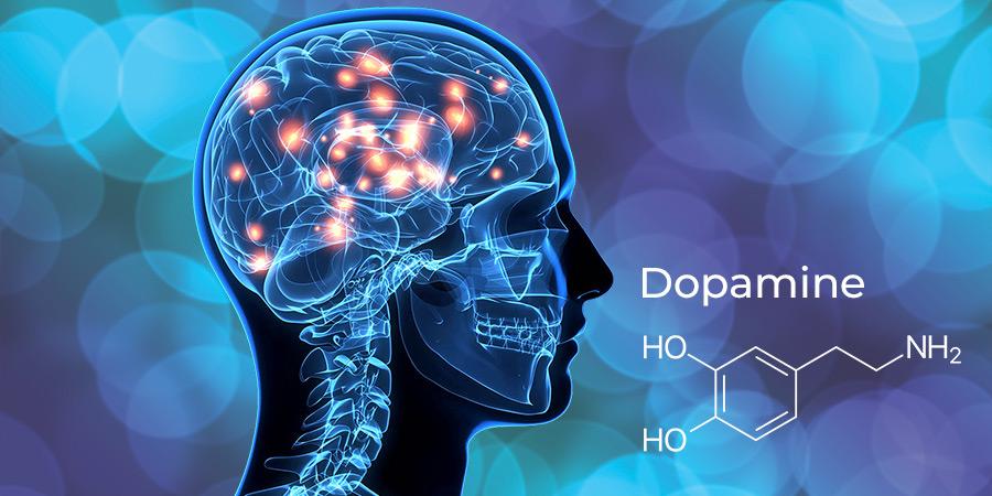 Dopamine supplement kopen